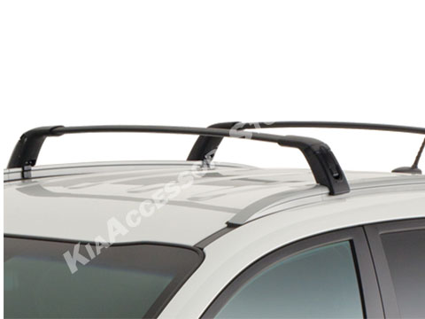2011_kia_sportage_cross_bars.jpg